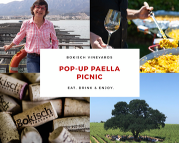 Pop-Up Paella Picnic 7-6