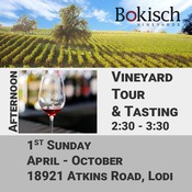 Afternoon Vineyard Tour and Tasting